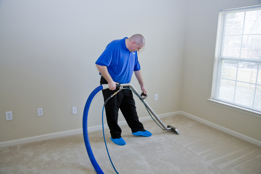 carpet cleaning company, steam cleaning